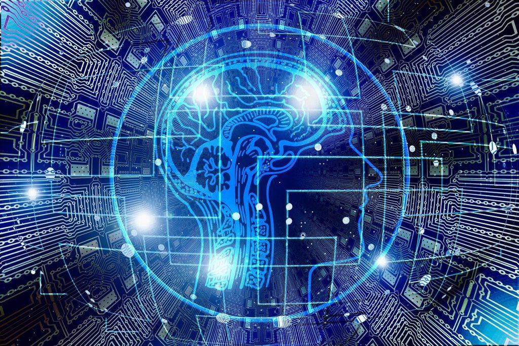 Computer graphic representation of the brain
